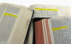 hebrew, german, and english language bibles