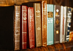 numerous bible translations on a shelf