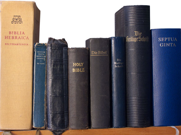 a row of Bibles in various languages